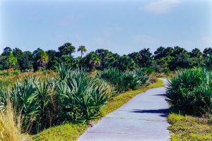 Nature in Boca Raton