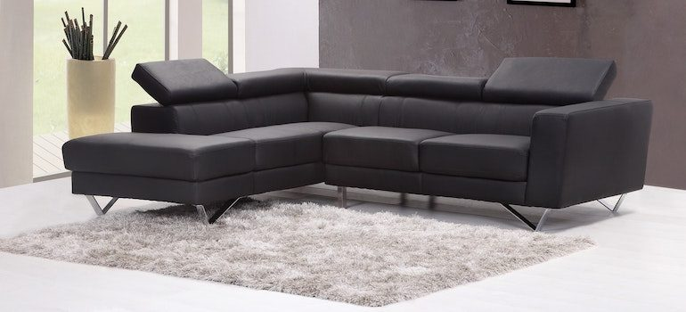 black sofa on a gray carpet next to the window