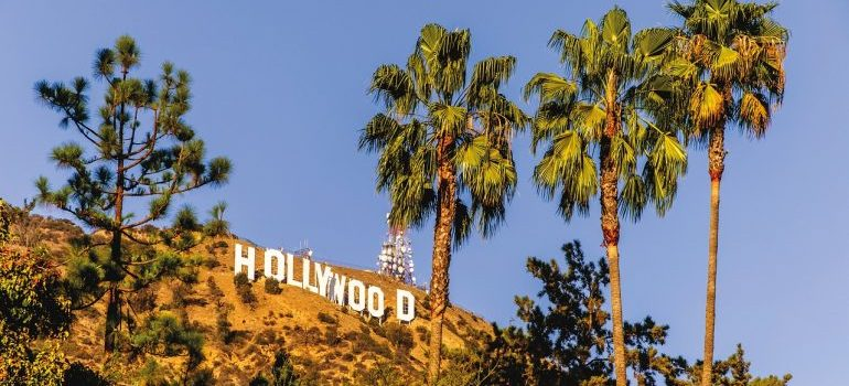 Hollywood sign and palm trees