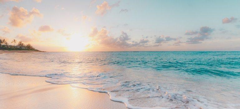 sandy beach and a sunset