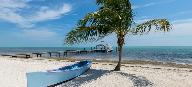 A boat and a palm three on the sunny beach with a wooden pier in the sea and a boat tied to the pier that the best company for your local relocation brought you to