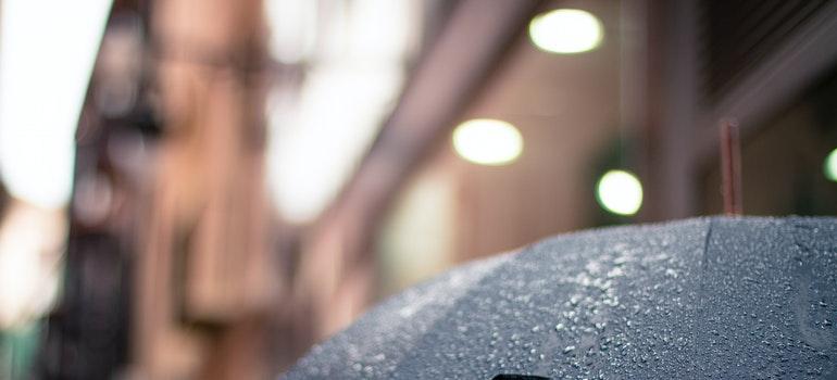 A black umbrella covered in rain