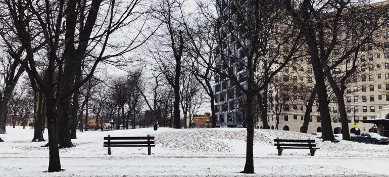 A snowy Chicago park