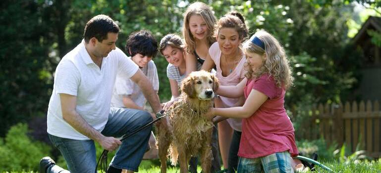 a family petting a dog