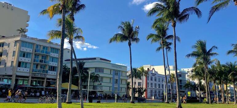move to Hialeah in 2021 to live in affordable apartments