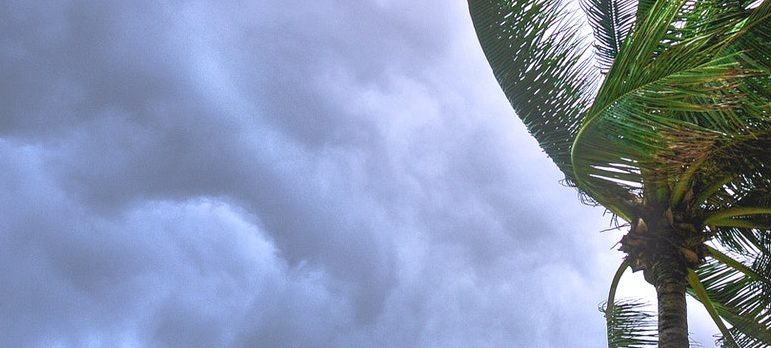 Research about tropical storm when thinking of retiring in Deerfield Beach