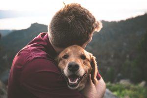 owner hugging a pet