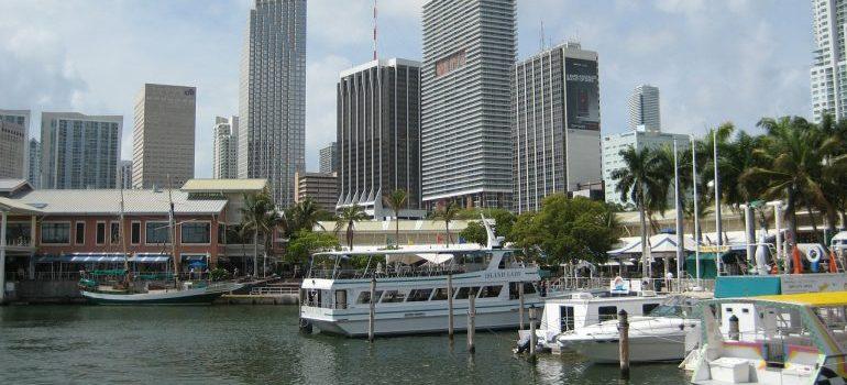 Miami port at day