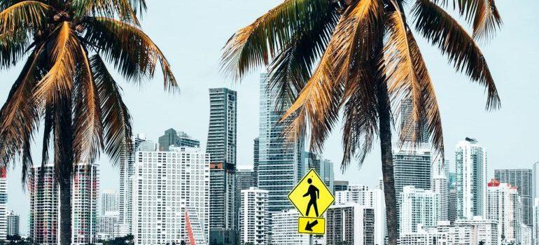 Europeans love Miami